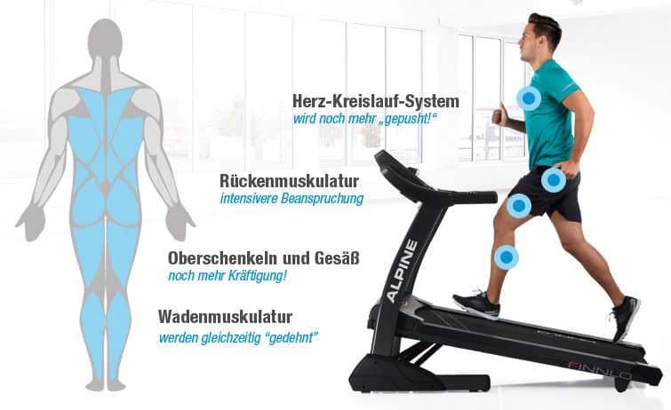 Laufband Training - Infografik (Welche Musklen werden beim Laufbandtraining trainiert?)